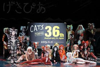 cats36th-01_8444.JPG