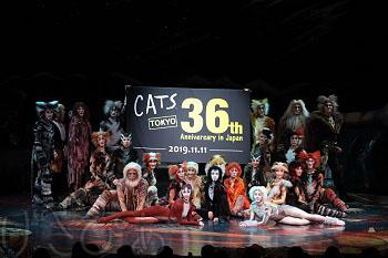 cats36th-06_8434.JPG