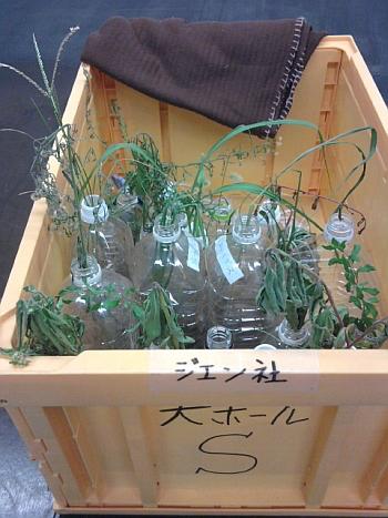 tokyofukubukuro09.jpg